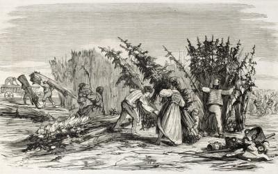 Historie využití konopí v léčbě